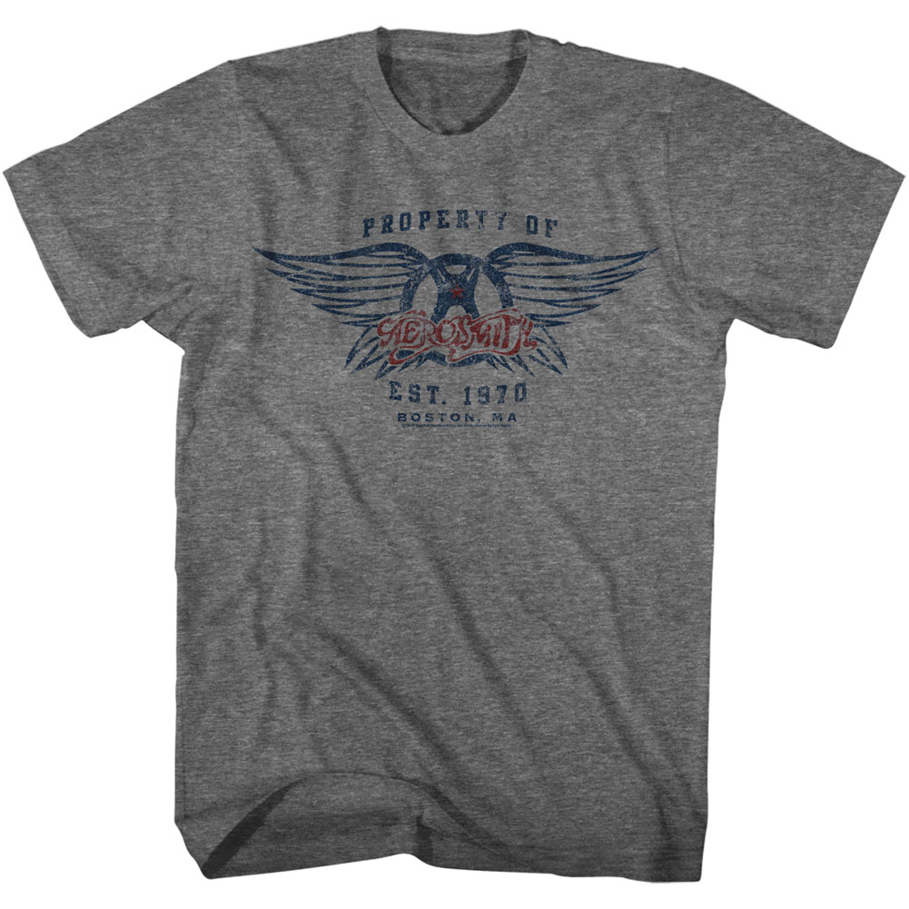 Aerosmith Established t shirt