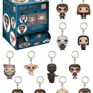 Harry Potter Keychain Blind Bag