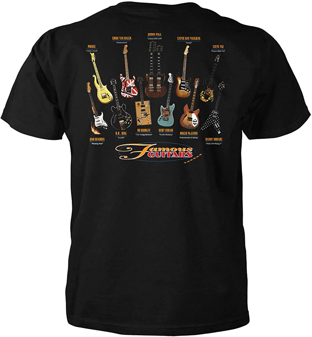 Famous Guitars Back